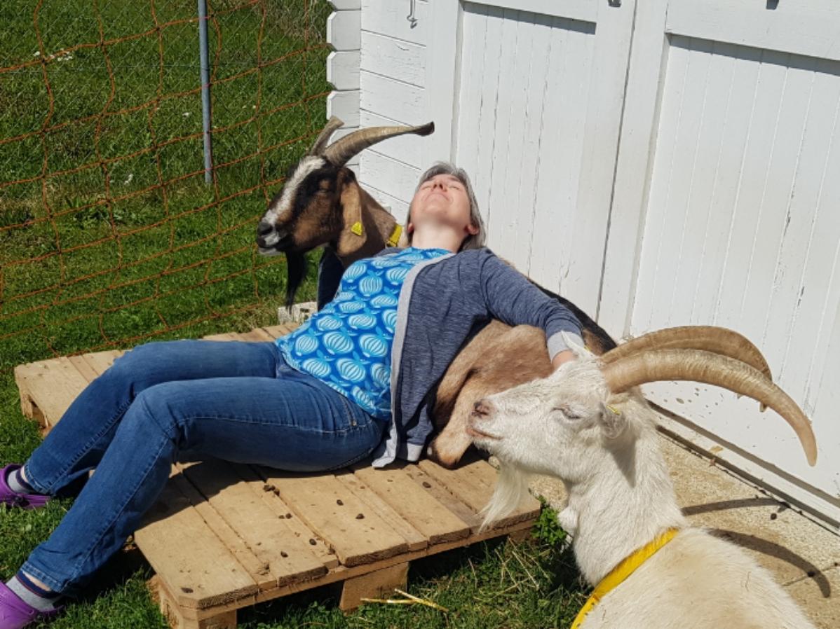 auf dem Bild liege ich entspannt bei meinen beiden Ziegen